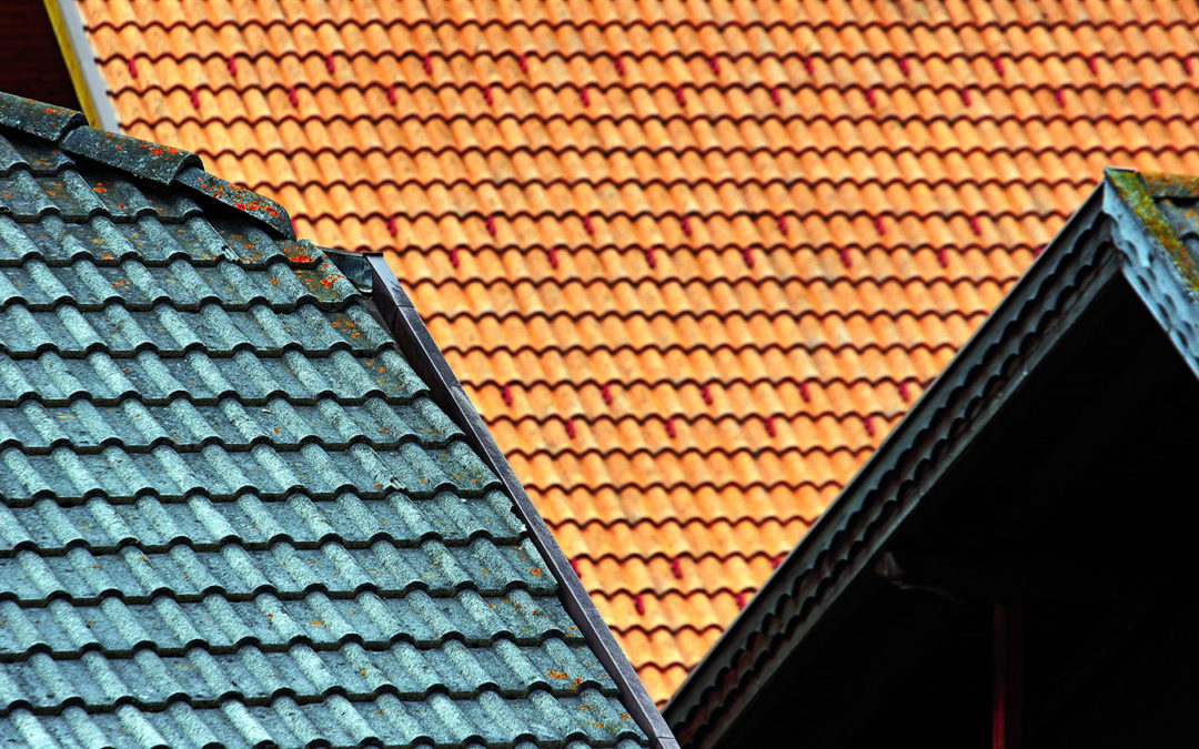 What Is the Best Time to Replace a Roof in Florida?