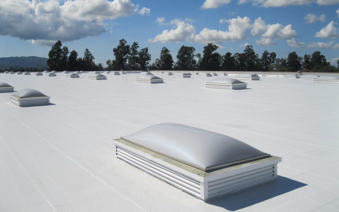 What is TPO Roofing?