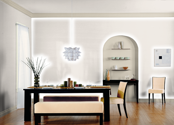 Timid White Diningroom